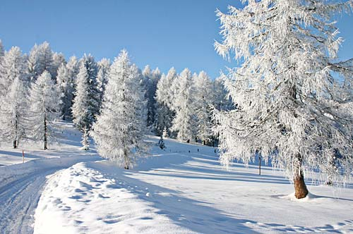 winter3_g